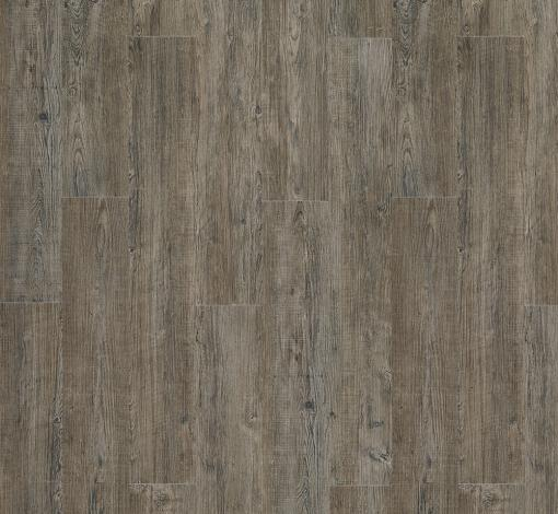 Moduleo Transform Wood Latin Pine 24868