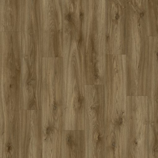 Moduleo Impress Sierra Oak 58876-0